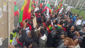 London, Oromo Peaceful rally in solidarity with #OromoProtests in Oromia against TPLF Ethiopian regime's ethnic cleansing (Master plan), December 10, 2015