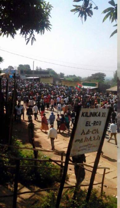 Mass #OromoProtests @Bako, Central Oromia, 14 December 2015