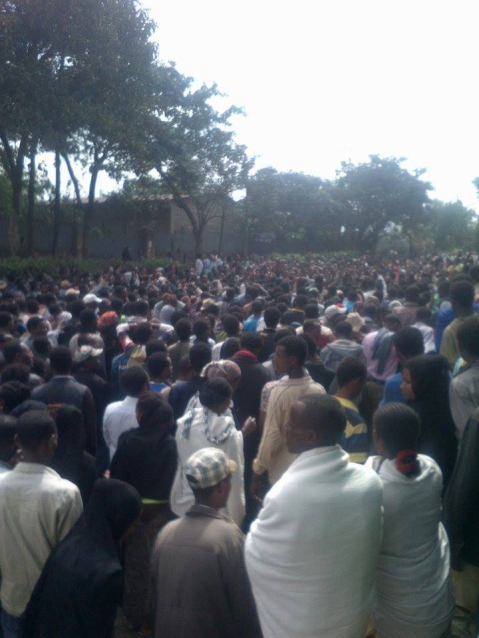 #OromoProtests @Ambo, 14 December 2015