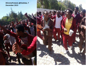 #OromoProtests @ Dodolaa (Arsi Lixaa), December 2015