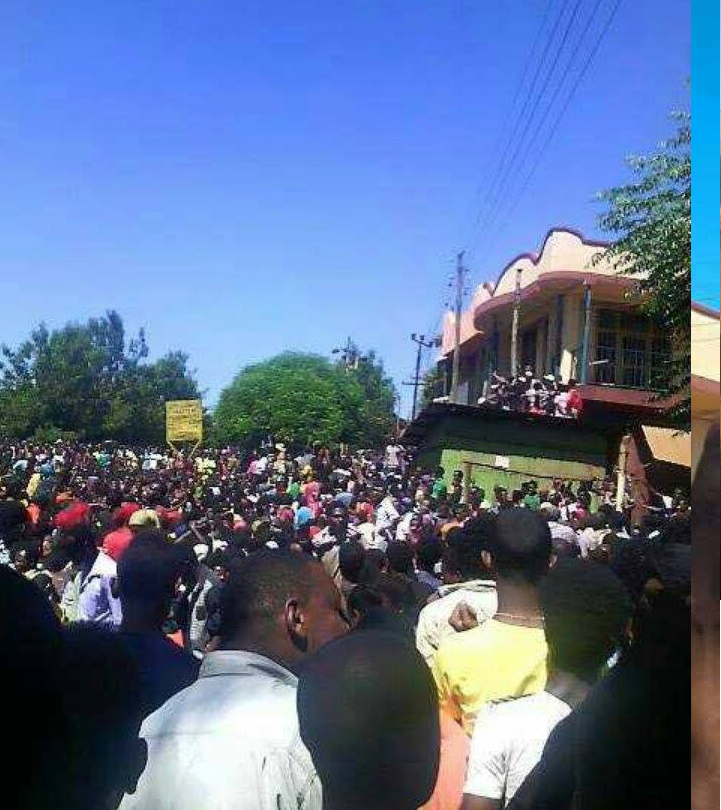 #OromoProtests @Mandi, Wallagaa, 14 December 2015 picture2