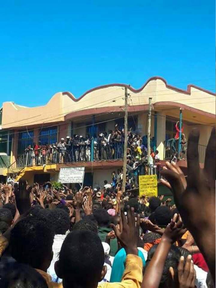 #OromoProtests @Mandi, Wallagaa, 14 December 2015.png