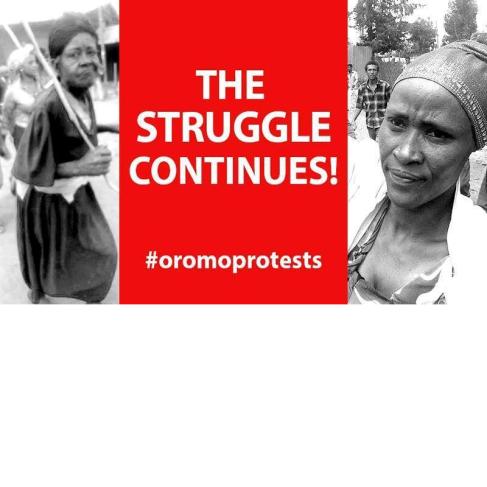 #OromoProtests, Qabosoon itti fufa jedhu aayyoleen