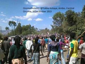 OromoProtests @Tokke Kotaye, Ambo, Central Oromia, 20December 2015