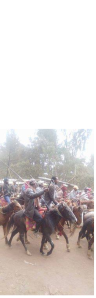 #OromoProtets, Gindo, 12 december 2015 picture2