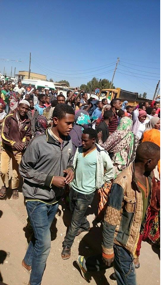 Residents of Haromaayyaa, #OromoProtests, Oromo protests against TPLF Ethiopia tyrannic regime.png