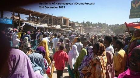 Residents of Haromaayyaa, #OromoProtests.png