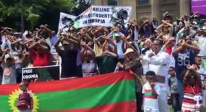 Oromia at Federation Square, Melbourne, Australia, January 3, 2016 p2