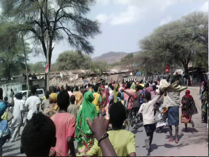 #OromoProtests against TPLF Ethiopian tyranny in Miesso, Hararghe, Oromia . 19 January 2016