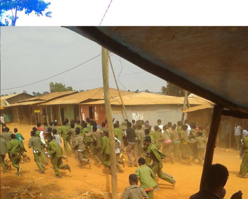 #OromoProtests @ Amuruu High school Students, Horroo Guduruu, Oromia, 29 January 2016