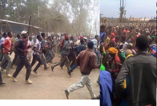 #OromoProtests.Bordoddee And Hirnaa (Hararghe), Oromia. 8 January 2016