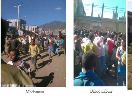 #OromoProtests, Machaaraa and Daroo Labuu, 31 December 2015