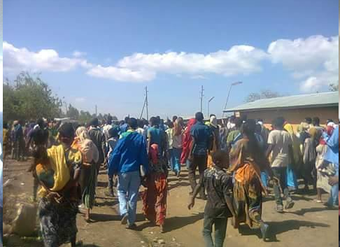 Tulo district residents of Rakatafira Village (West Harararge) staged protest. 3rd January 2016
