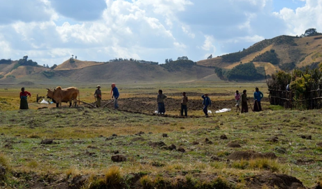 Workers near Chitu in the Oromia