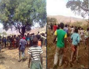 OromoProtests @Baddannoo, Dheertuu Raamisi, Hararge, Oromia, Feb 25, 2016