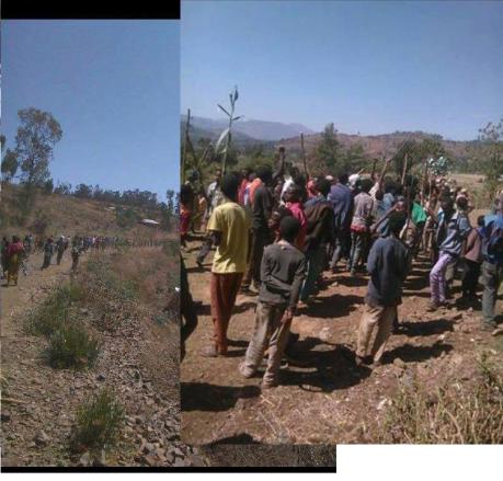 #OromoProtests in Dadar, East Hararge Feb 20, 2016