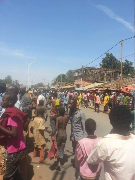 #OromoProtests, Nagelle Borana, 20 Feb. 2016 p3