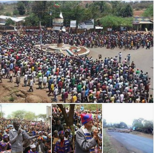 Konso People Protests the tyranny of fascist TPLF Ethiopia's regime, 8 March 2016