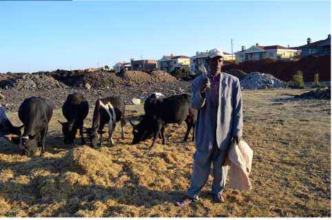 Oromo farmer on his farmland under land grabs