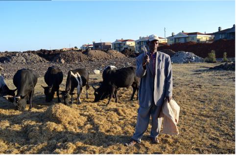Oromo farmer on his farmland under land grabs