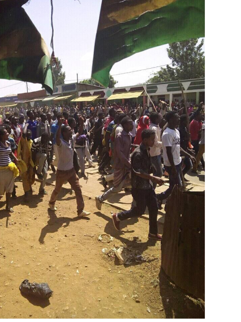 OromoProtests 1 March 2016 continues in Gujii province of Oromia, Anna Sorraa district Me'ee Bokko town