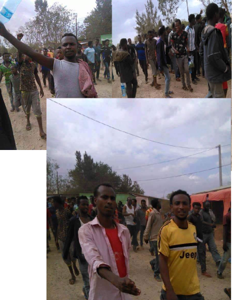 #OromoProtests at Fadis, Bokkoo town, East Hararghe, Oromia, 29 March 2016