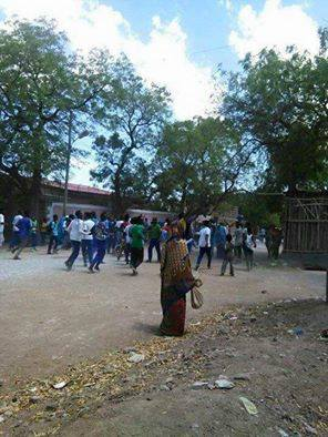 #OromoProtests at Laga Harree School, Dirree, Eastern Oromia, 11 March 2016 p2