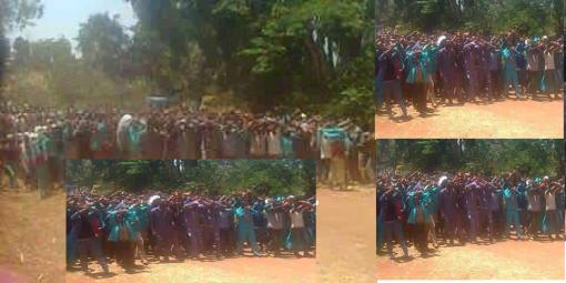 #OromoProtests Giddaa Ayyaanaa, E. Wallaggaa, 22nd March 2016