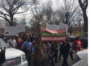 #OromoProtests Global solidarity rally in Washington DC, 11 March 2016.