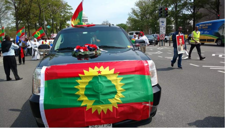#OromoProtests in solidarity rally in DC, 19 April 2016