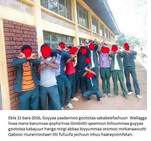 #OromoProtests, Wallagga lixaa mana barumsaa qopha'inaa Gimbiitti, 27 April 2016