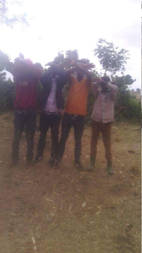 #OromoProtests, Youths at Hacaca mountain in Bale, Southern Oromia, 9 April 2016