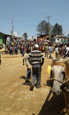 #OromoProtests, Beddellee, Iluu Abbaa Booraa, 10 May 2016