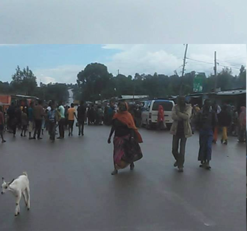 #OromoProtests, Qarsaa, Hararghe, Oromia, 10 May 2016 p2