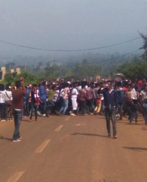 Spring Celebration, Irreecha Arfaasaa, Jimmaa, Tulluu Deeddee, Oromia 15 May 2016 p7