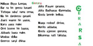 Geerarsa Oromoo, hallayyaa biyya leeqaa