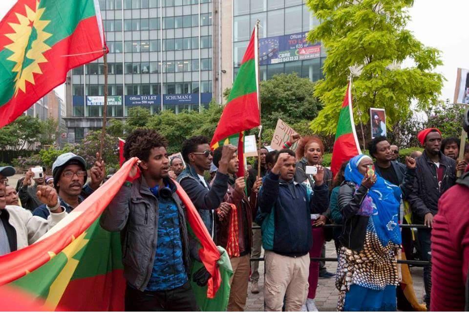 #OromoProtests solidarity rally in Brusells, Beligium, 3 June 2016