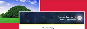 OromianEconomist