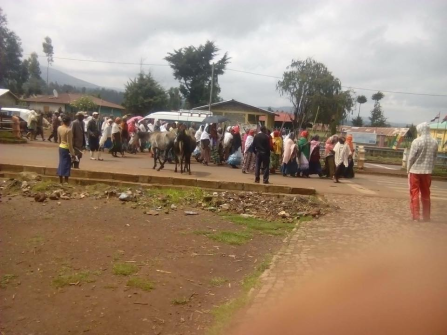 #Oromoprotests, Leemmuu and Bilbiloo district, Boqojjii village, Arsi, Oromia, 14 July 2016. p2