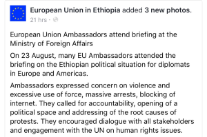 EU Ambassadors briefing on Ethiopia, 23 August 2016