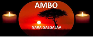 Grand #OromoProtests, Ambo, 7 August 2016
