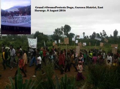 Grand #OromoProtests Dogu, Gurawa District, East Hararge. 8 August 2016