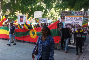 Grand #OromoProtests Global solidarity joint Ethiopians Rally Held in Sheattle, USA on 16 August 2016