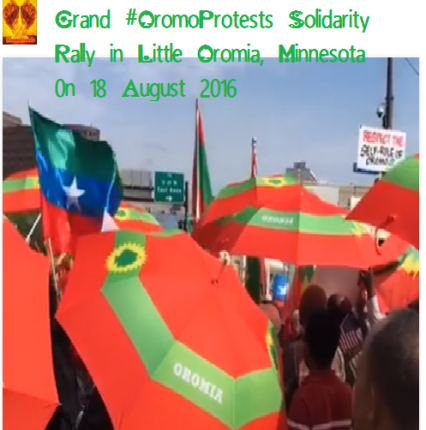 Grand #OromoProtests Global Solidarity Rally, 18 August 2016 Held in Little Oromia, Minnesota, USA