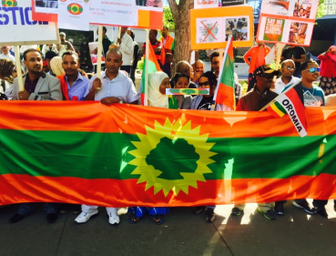 Grand #OromoProtests Global Solidarity Rally in Calgary, Canada on 19 August 2016 p2