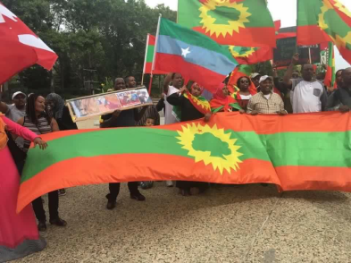 Grand #OromoProtests Global Solidarity Rally in Edmonton, Canada on 19 August 2016 p2