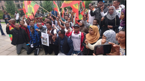 Grand #OromoProtests Global Solidarity Rally in Oslo, Noraway, 19 August 2016 p3