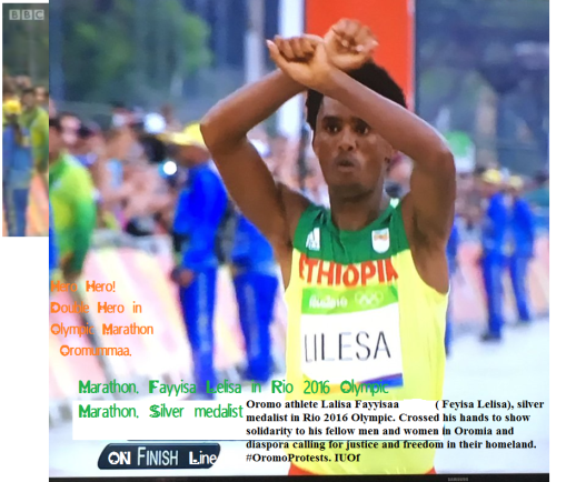 Hero Hero, double hero in Olympic Marathon, Rio 2016 and Oromummaa. Oromo athlete. Fayyisaa Lelisaa.