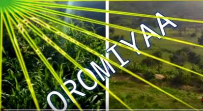 Oromiyaa