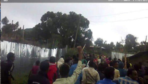 #OromoProtests 1st August 2016 in Dadar, Hararghe, Oromia.